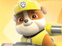 Флеш игра Щенячий патруль: Академия щенков