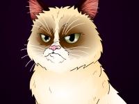 Флеш игра Сердитый кот