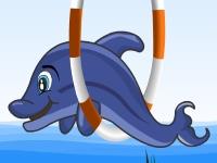Флеш игра Шоу дельфина