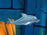 Флеш игра Шоу с дельфином 7