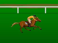 Флеш игра Скачки на лошадях