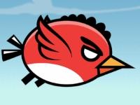 Флеш игра Слегка взбешенная птичка
