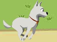 Флеш игра Собака любит паркур