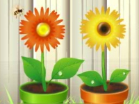Флеш игра Собери цветы
