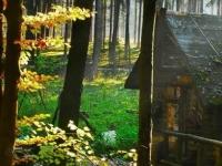 Флеш игра Старый дом: Скрытые мишени