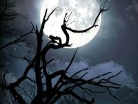 Флеш игра Темнота: Поиск звезд