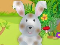 Флеш игра Уход за милым кроликом