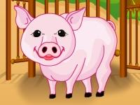 Флеш игра Уход за свиньями