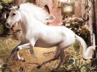 Флеш игра Великолепные лошадки