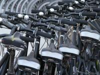 Флеш игра Велосипеды: Поиск предметов