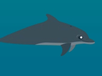 Флеш игра Весёлый дельфин