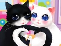 Флеш игра Влюбленные кошки
