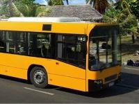 Флеш игруха Водитель длинного автобуса 0