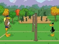 Флеш игра Волейбол с утками