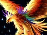 Флеш игра Волшебные птицы: Поиск звезд