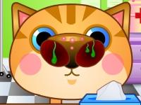 Флеш игра Вылечи кошкин нос