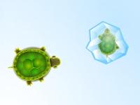 Флеш игра Замерзшие черепашки