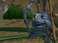 Флеш игра Жизнь жуков