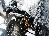 Флеш игра Зимняя гонка на квадроциклах