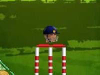 Флеш игра Злой крикет